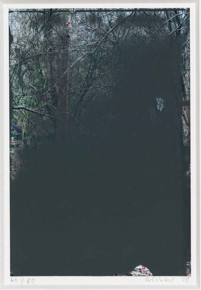 Gerhard Richter, Ağaç, Kanvas Tablo, Gerhard Richter, kanvas tablo, canvas print sales