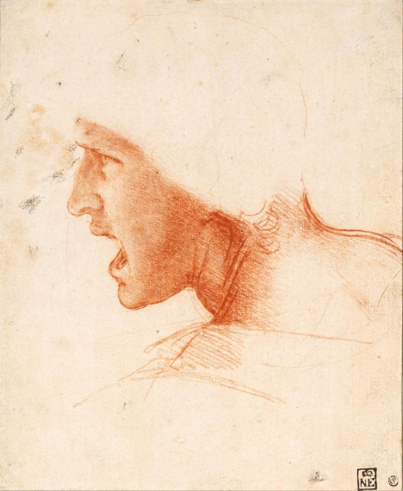 Study of a Warrior's Head for the Battle of Anghiari, Leonardo da Vinci, Canvas, Leonardo Da Vinci