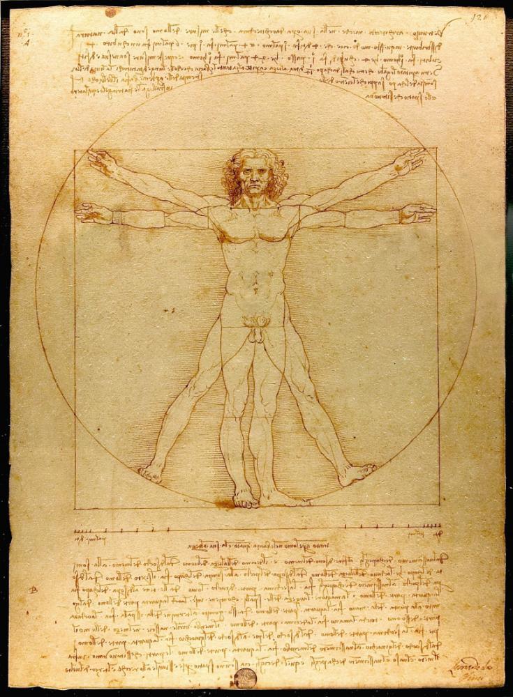 Vitruvius Adamı Leonardo da Vinci, Kanvas Tablo, Leonardo Da Vinci, kanvas tablo, canvas print sales