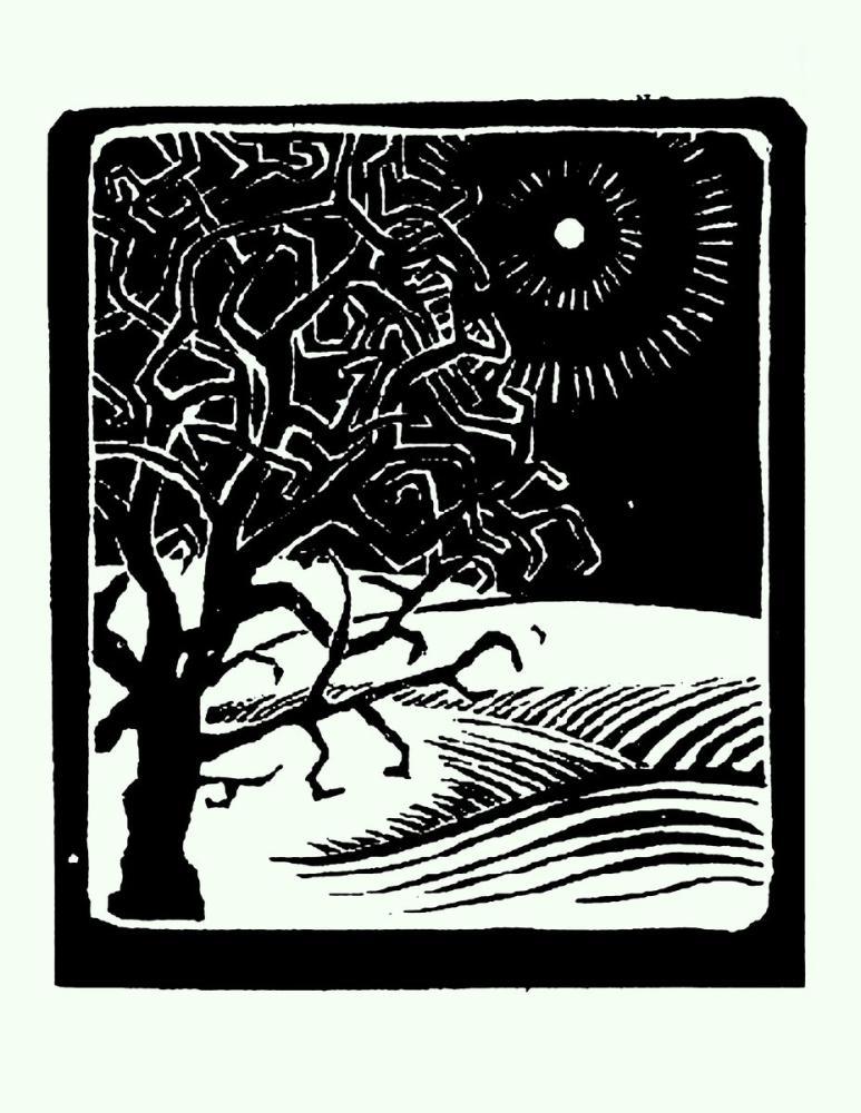 Maurits Cornelis Escher The Borger Oak, Canvas, Maurits Cornelis Escher, kanvas tablo, canvas print sales
