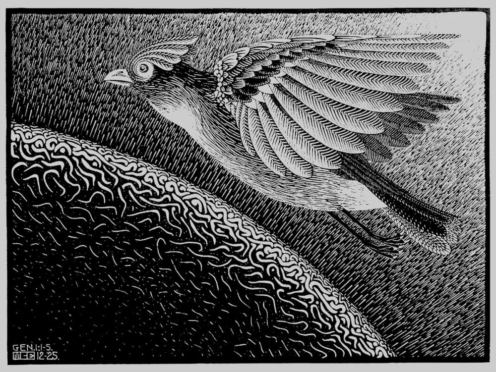 Maurits Cornelis Escher The First Day Of The Creation, Figure, Maurits Cornelis Escher, kanvas tablo, canvas print sales