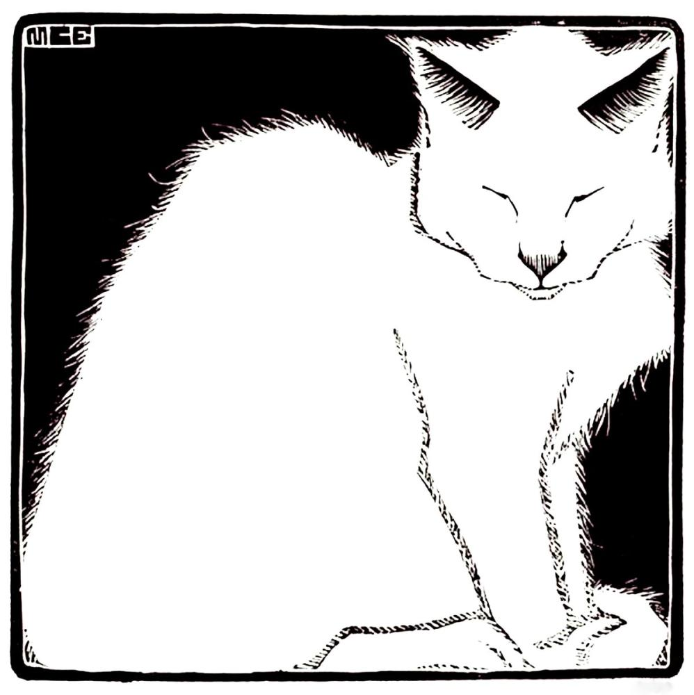 Maurits Cornelis Escher White Cat I, Canvas, Maurits Cornelis Escher, kanvas tablo, canvas print sales