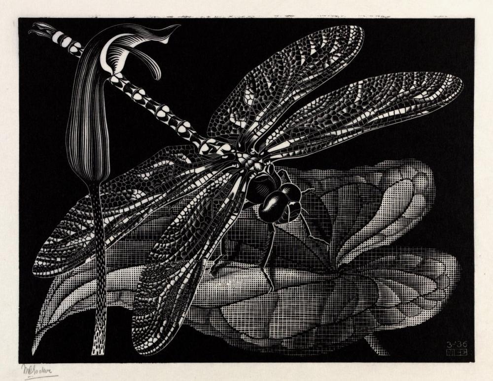 Maurits Cornelis Escher Dragonfly, Canvas, Maurits Cornelis Escher, kanvas tablo, canvas print sales
