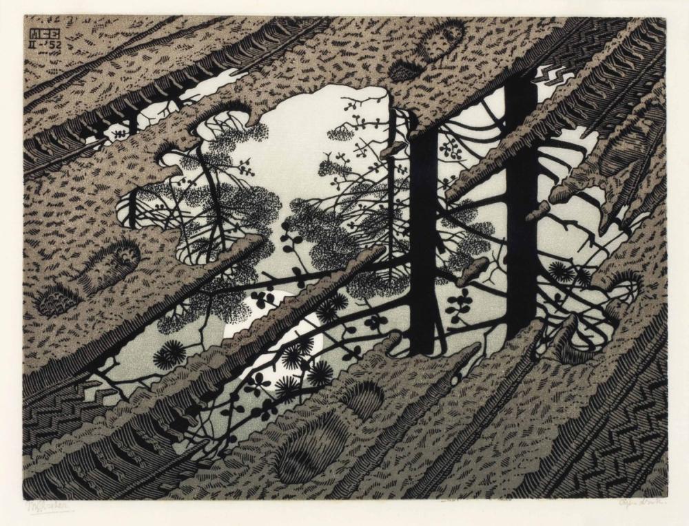 Maurits Cornelis Escher Puddle, Canvas, Maurits Cornelis Escher, kanvas tablo, canvas print sales