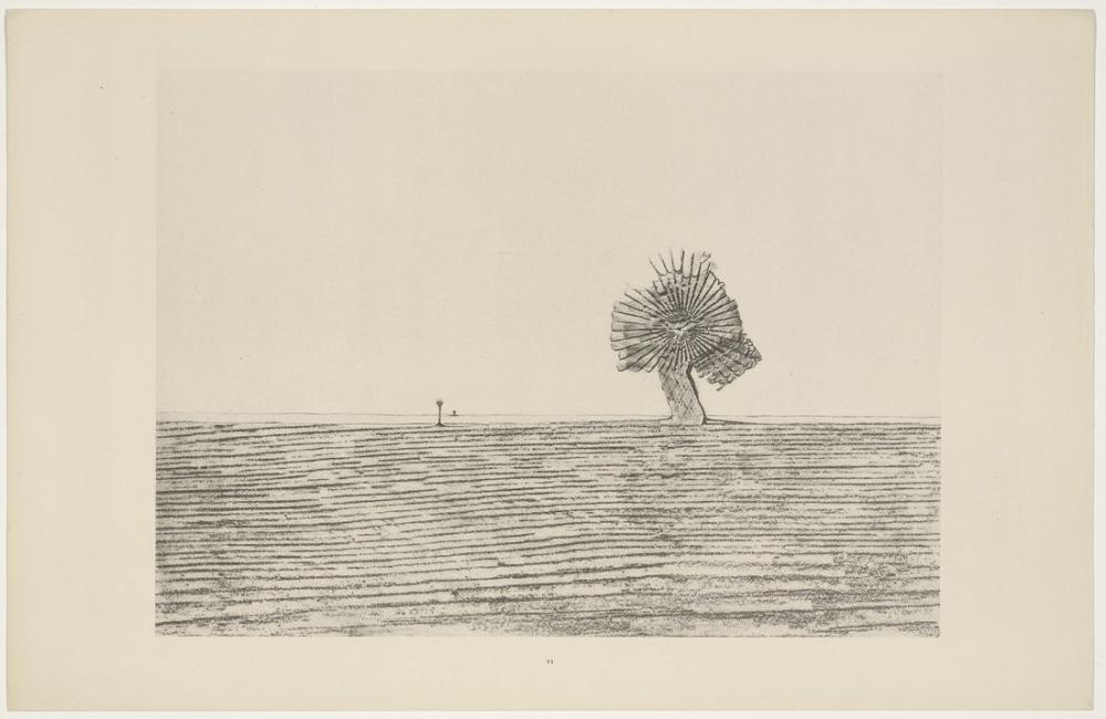 Max Ernst Pampalar, Kanvas Tablo, Max Ernst, kanvas tablo, canvas print sales