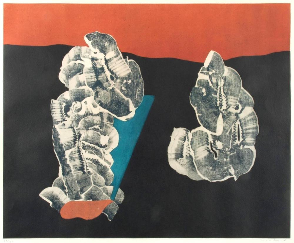 Max Ernst Fleurs Coquillage, Canvas, Max Ernst, kanvas tablo, canvas print sales