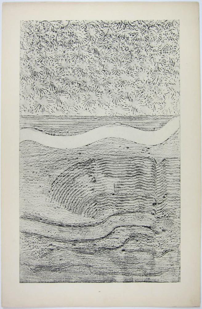 Max Ernst Iceflower Shawl And Gulf Stream, Canvas, Max Ernst, kanvas tablo, canvas print sales