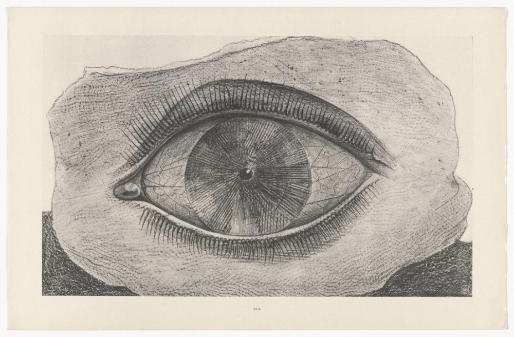 Max Ernst Işık Çarkı, Figür, Max Ernst, kanvas tablo, canvas print sales