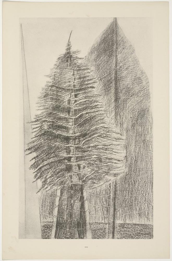 Max Ernst Büyüleyici Selvi, Kanvas Tablo, Max Ernst, kanvas tablo, canvas print sales