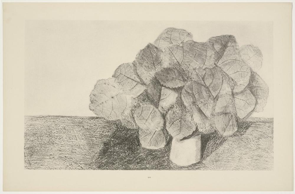 Max Ernst Uysal Ihlamur Ağacı, Kanvas Tablo, Max Ernst, kanvas tablo, canvas print sales