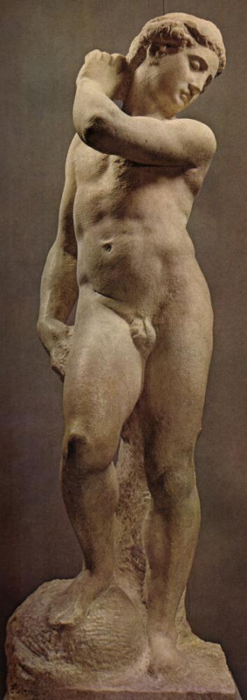 Apollino, Michelangelo, Kanvas Tablo, Michelangelo, kanvas tablo, canvas print sales