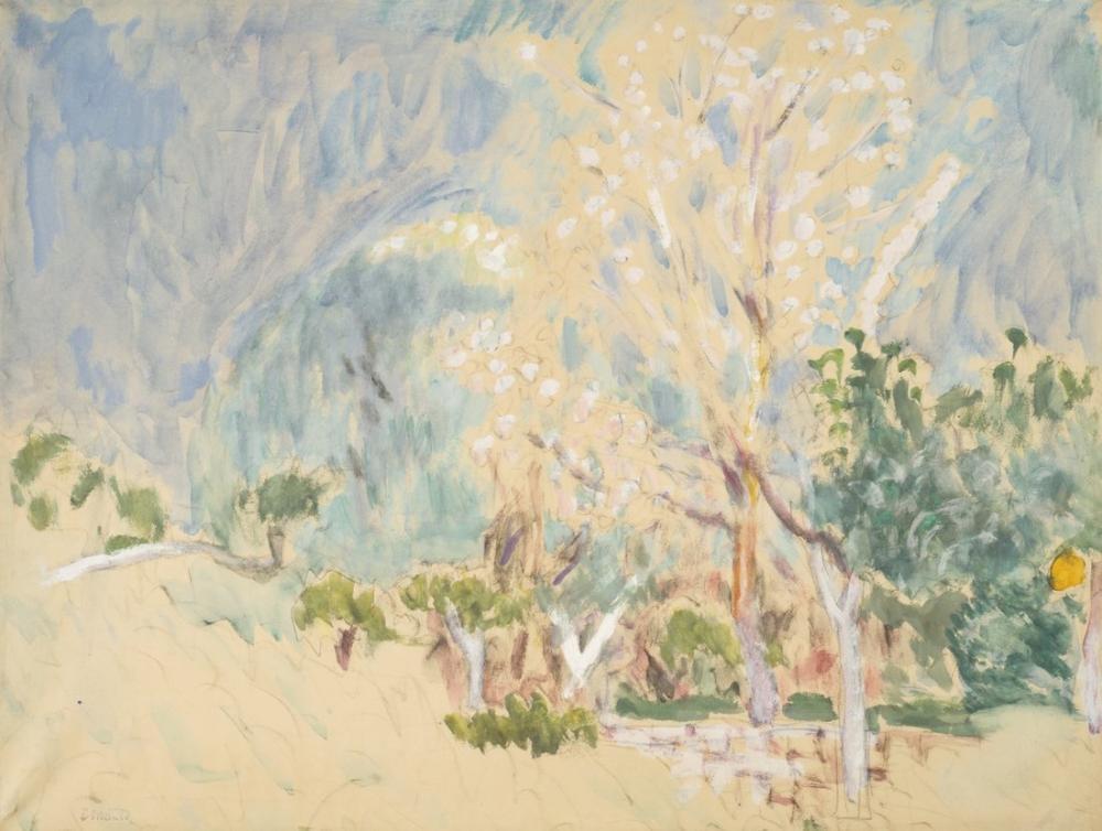 Pierre Bonnard Paysage Au Cannet Les Arbres Blancs, Canvas, Pierre Bonnard, kanvas tablo, canvas print sales
