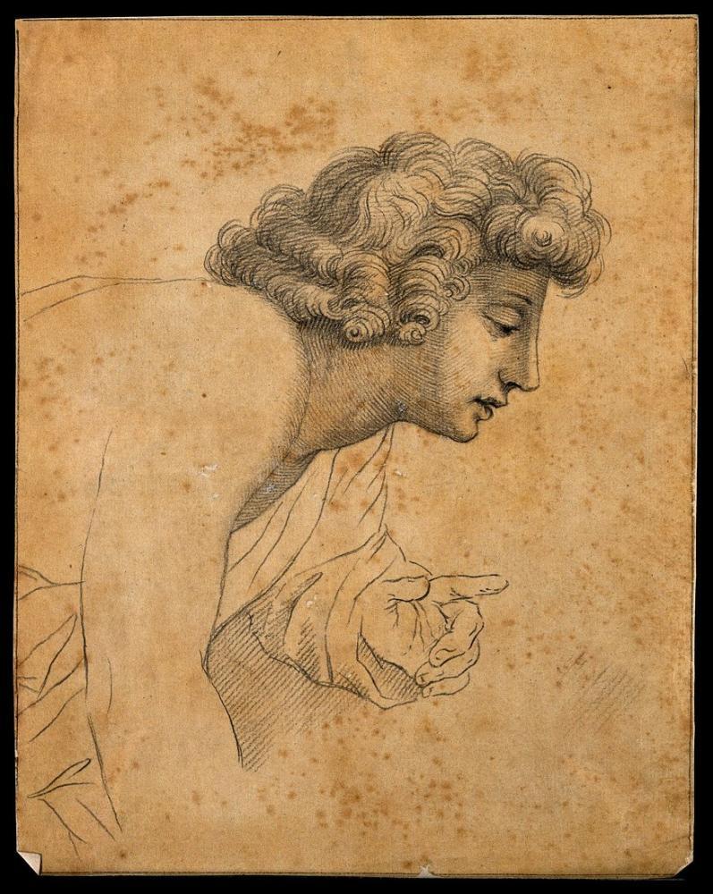 Raphael Lavater Örnekleyen Bir Çocuğun Profili, Kanvas Tablo, Raphael, kanvas tablo, canvas print sales