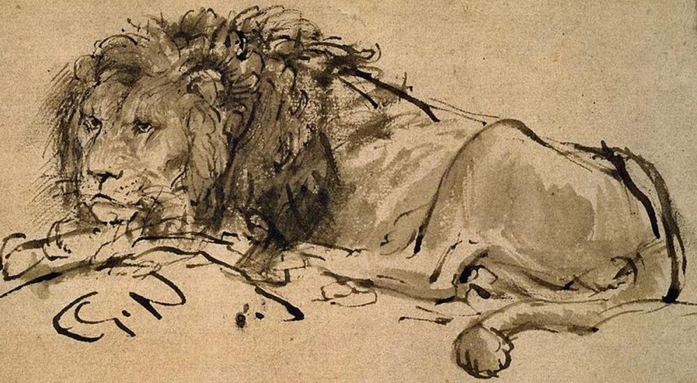 Rembrandt van Rijn, Aşağı Uzanmış Bir Aslan, Kanvas Tablo, Rembrandt, kanvas tablo, canvas print sales
