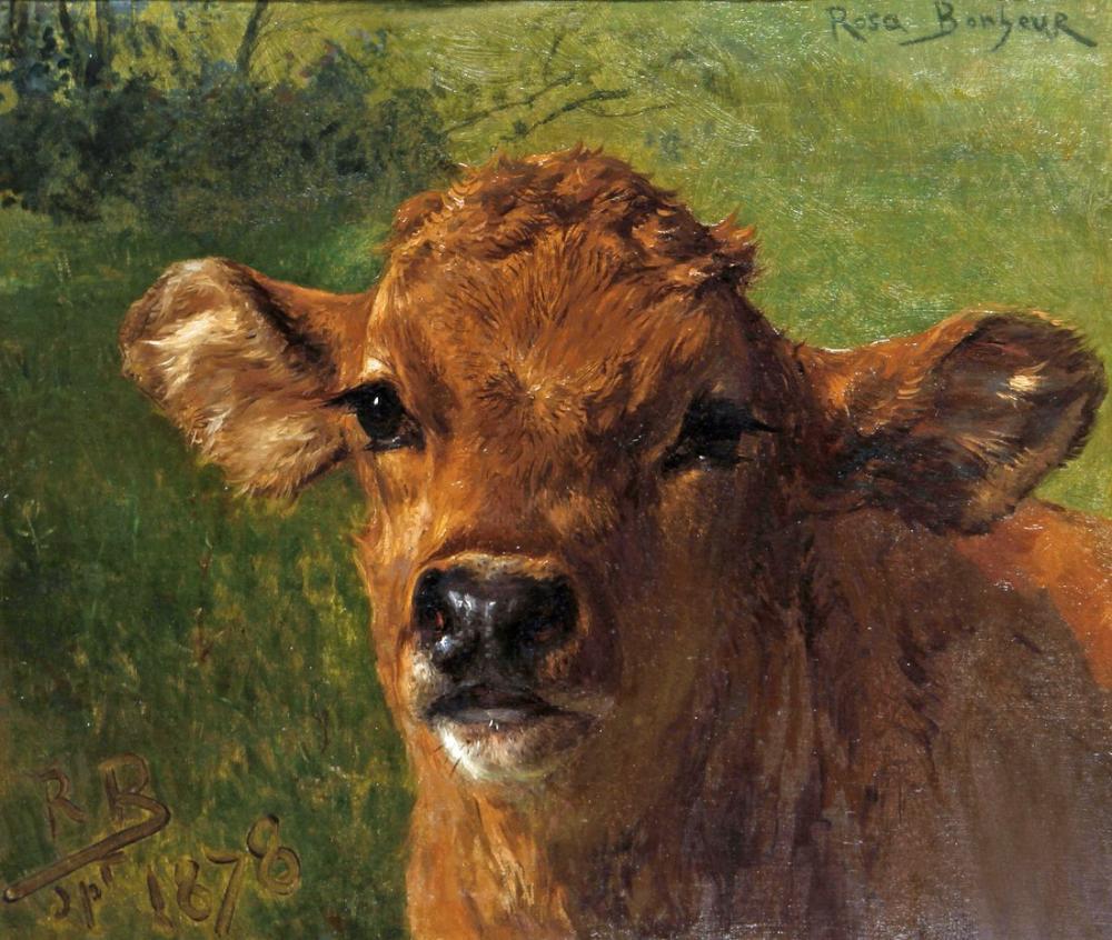Rosa Bonheur, Bir Buzağı Başı, Kanvas Tablo, Rosa Bonheur, kanvas tablo, canvas print sales