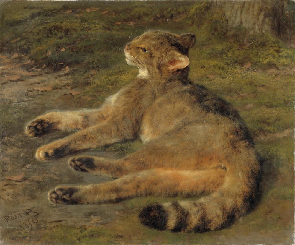 Rosa Bonheur, Wild Cat, Canvas, Rosa Bonheur, kanvas tablo, canvas print sales