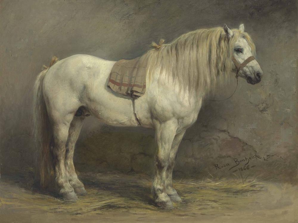 Rosa Bonheur, Beyaz Bir At, Kanvas Tablo, Rosa Bonheur, kanvas tablo, canvas print sales