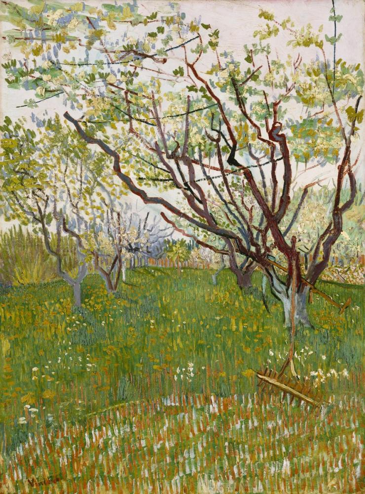 Vincent van Gogh, Blossoming Orchard, Canvas, Vincent Van Gogh, kanvas tablo, canvas print sales