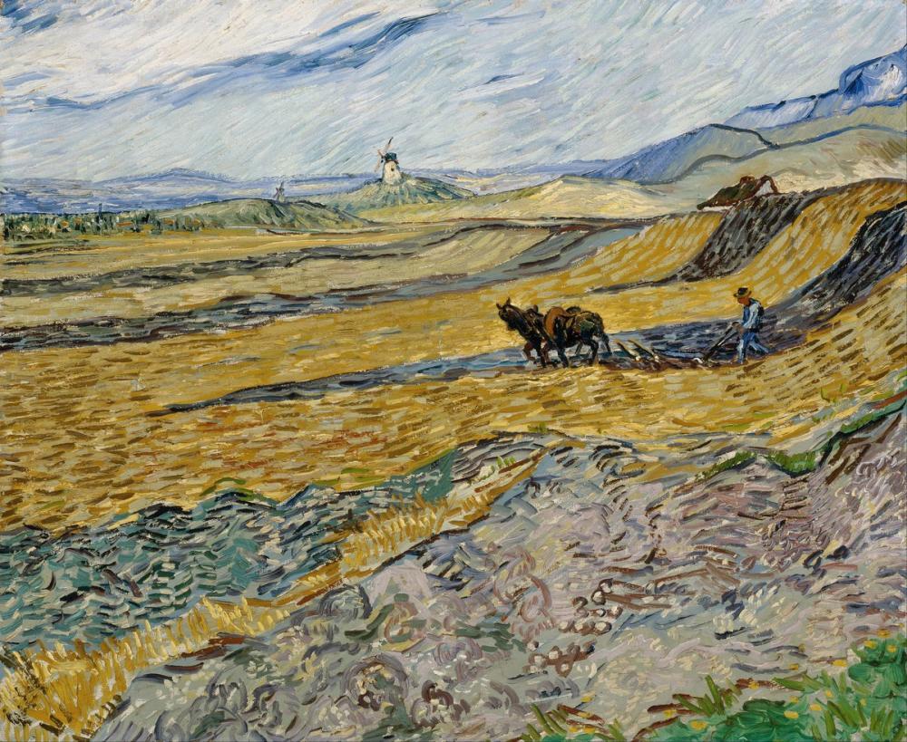 Vincent van Gogh, Enclosed Field with Ploughman, Canvas, Vincent Van Gogh, kanvas tablo, canvas print sales