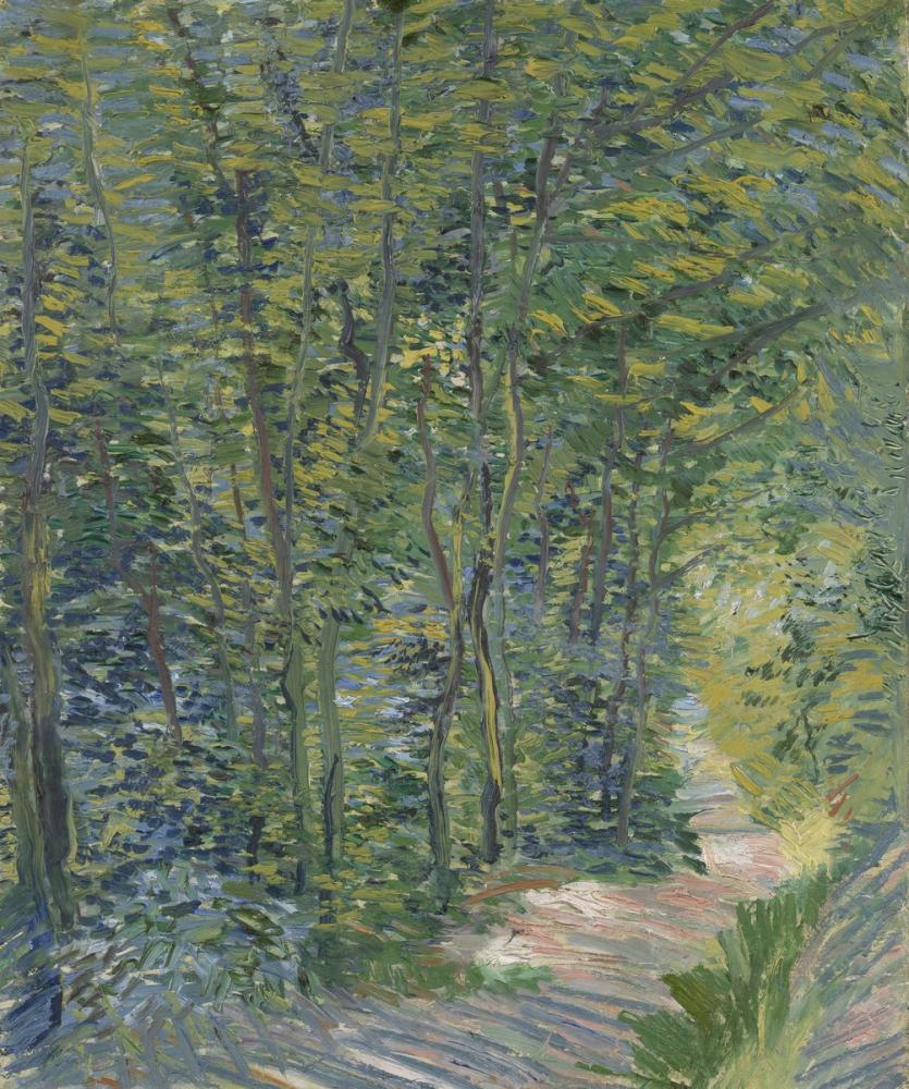 Vincent van Gogh, Forest Path, Canvas, Vincent Van Gogh, kanvas tablo, canvas print sales