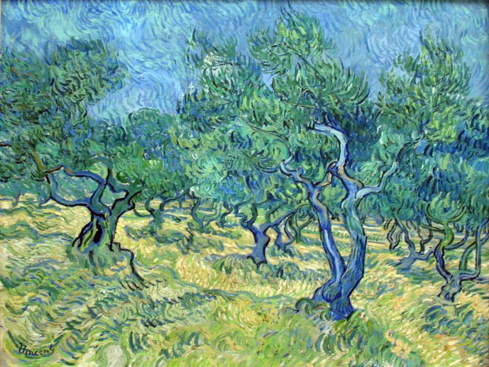 Vincent van Gogh, Olive Garden, Canvas, Vincent Van Gogh, kanvas tablo, canvas print sales