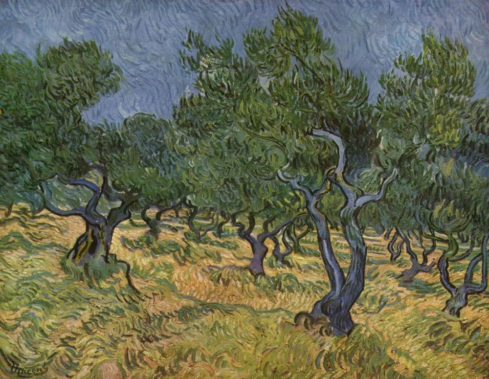 Vincent van Gogh, Olive Trees 1889, Canvas, Vincent Van Gogh, kanvas tablo, canvas print sales