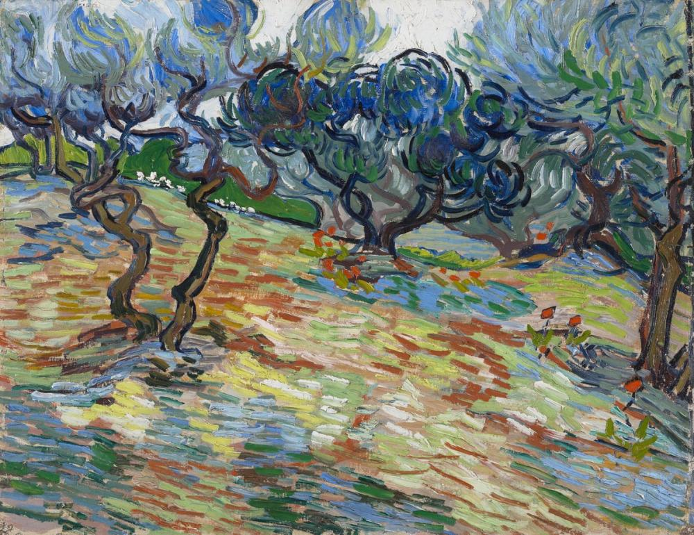 Vincent van Gogh, Zeytin Ağaçları, Kanvas Tablo, Vincent Van Gogh, kanvas tablo, canvas print sales
