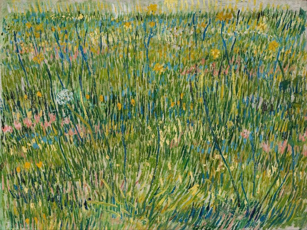 Vincent van Gogh, Patch of Grass, Canvas, Vincent Van Gogh, kanvas tablo, canvas print sales