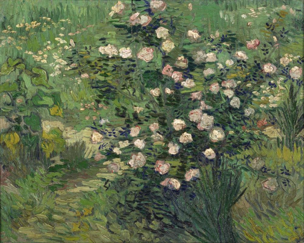 Vincent van Gogh, Roses II, Canvas, Vincent Van Gogh, kanvas tablo, canvas print sales