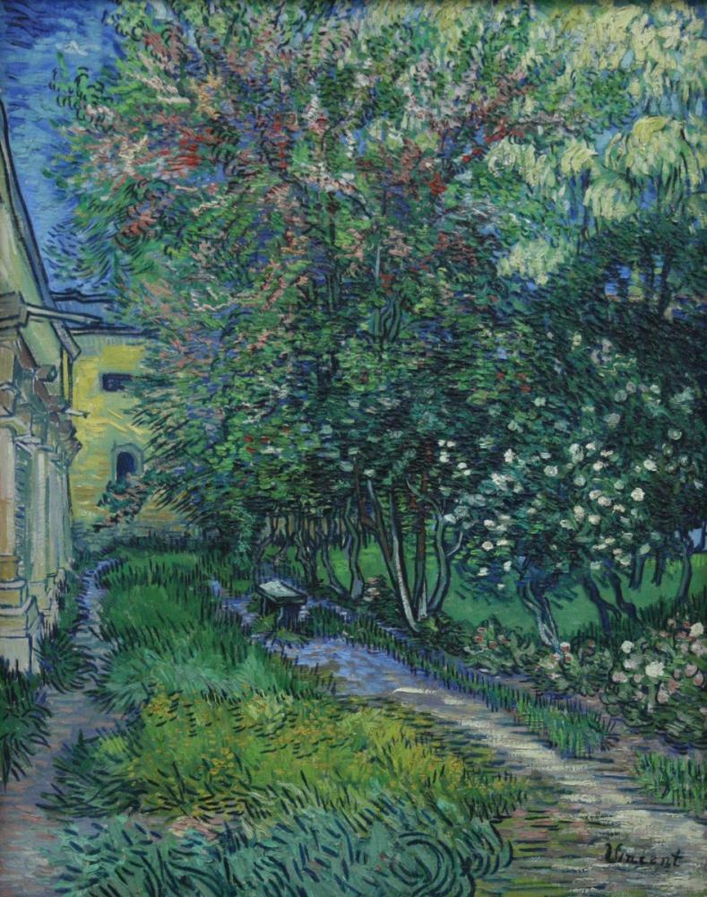 Vincent van Gogh, The Garden of Saint Paul Hospital, Canvas, Vincent Van Gogh, kanvas tablo, canvas print sales