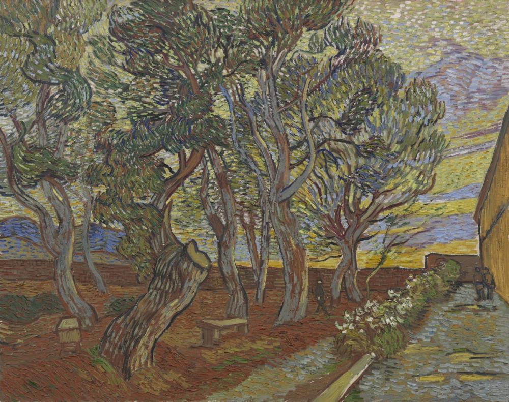Vincent van Gogh, The Garden of Saint Paul s Hospital, Canvas, Vincent Van Gogh, kanvas tablo, canvas print sales