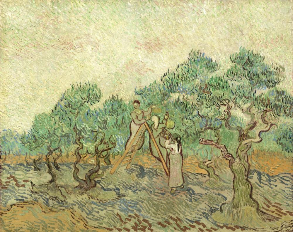 Vincent van Gogh, The Olive Orchard, Canvas, Vincent Van Gogh, kanvas tablo, canvas print sales