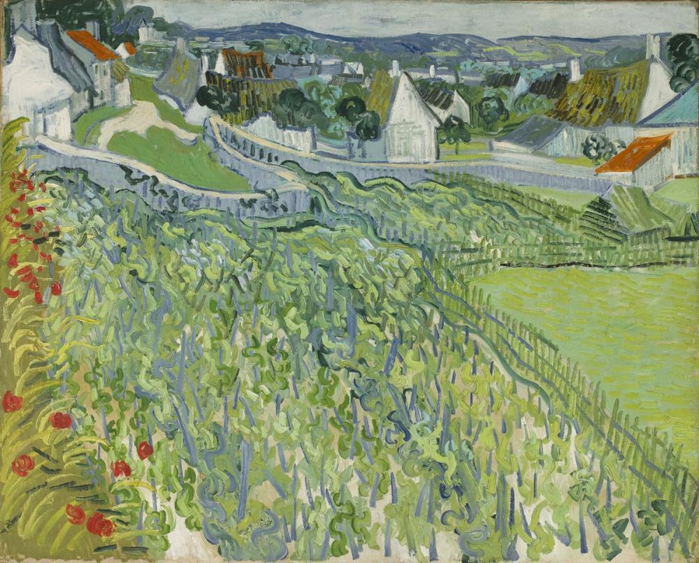 Vincent van Gogh, Vineyards at Auvers, Canvas, Vincent Van Gogh, kanvas tablo, canvas print sales