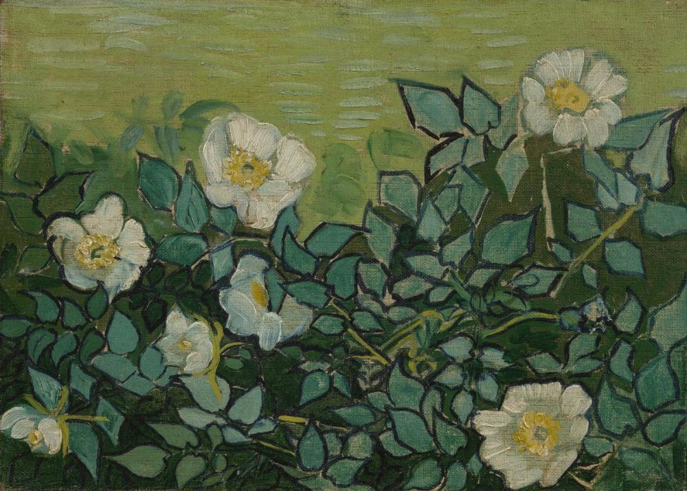Vincent van Gogh, Wild Roses, Canvas, Vincent Van Gogh, kanvas tablo, canvas print sales