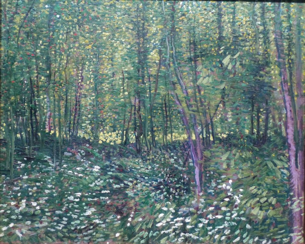 Vincent van Gogh, Ağaçlar Ve Ağaç Altındaki Çalılık Paris, Kanvas Tablo, Vincent Van Gogh, kanvas tablo, canvas print sales