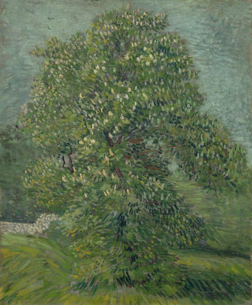 Vincent van Gogh, Kestane Ağacı Çiçeği, Kanvas Tablo, Vincent Van Gogh, kanvas tablo, canvas print sales
