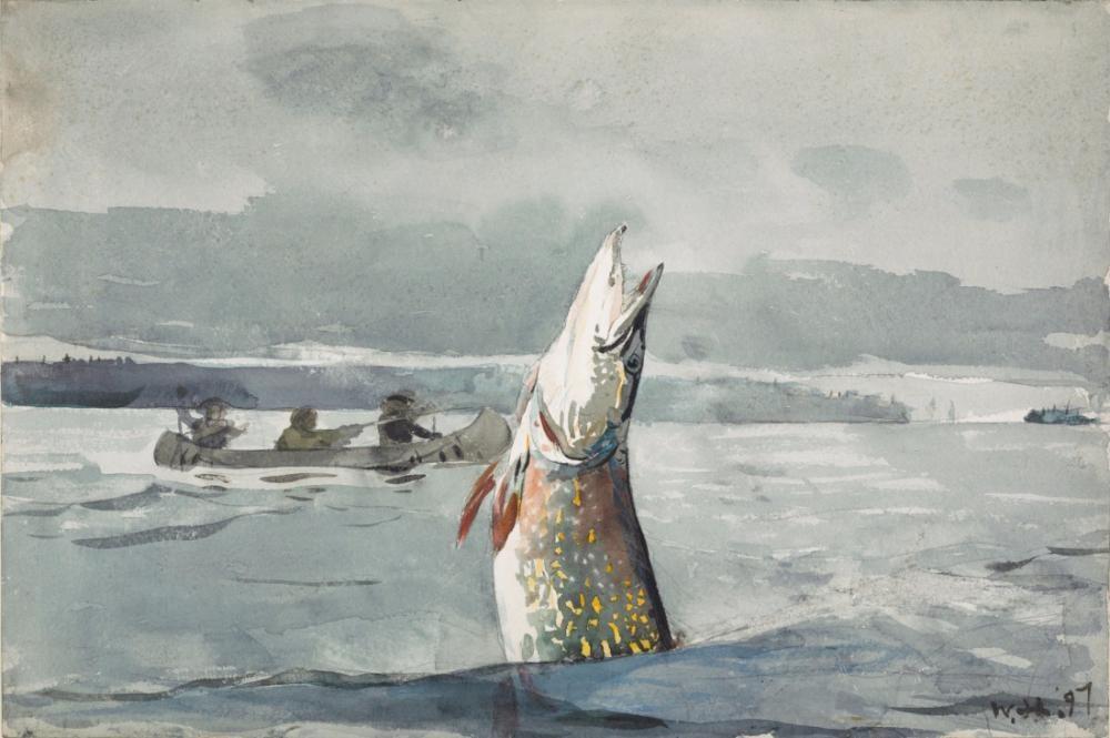 Pike Lake, St. John, Winslow Homer, Canvas, Winslow Homer, kanvas tablo, canvas print sales
