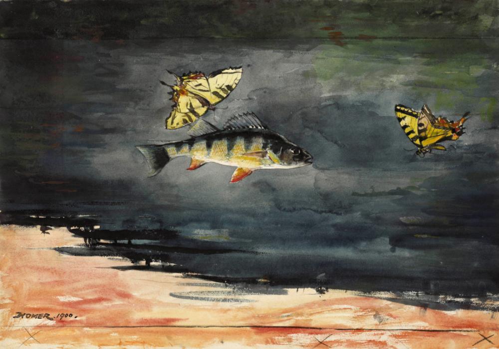 Balık ve Kelebek, Bermuda, Winslow Homer, Kanvas Tablo, Winslow Homer