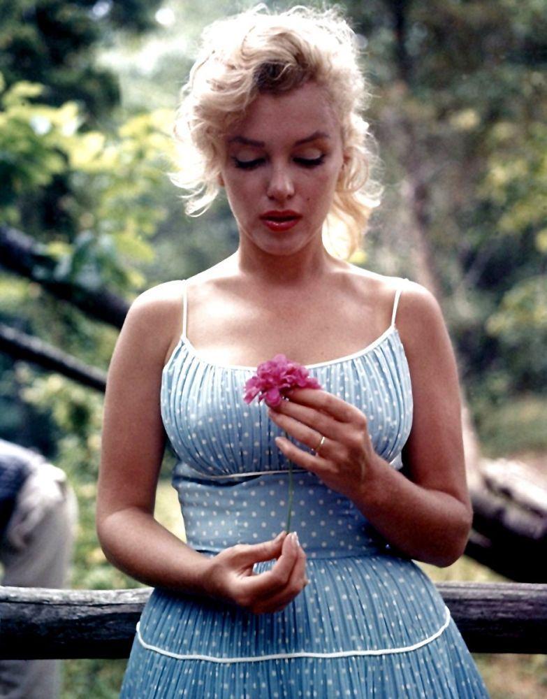 Marilyn Monroe Holding A Red Flower, Marilyn Monroe, Poster Satış, all posters, kanvas tablo, canvas print sales