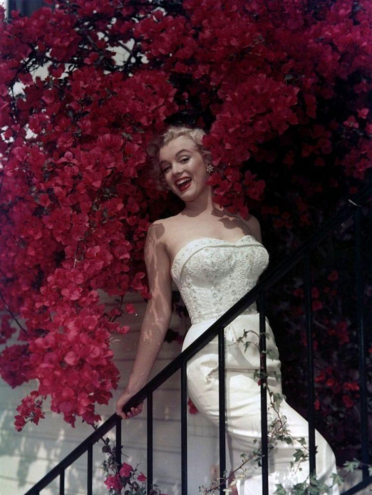 Marilyn Monroe Under Judas-tree Poster, Canvas Paintings, Marilyn Monroe, Poster Satış, all posters, kanvas tablo, canvas print sales