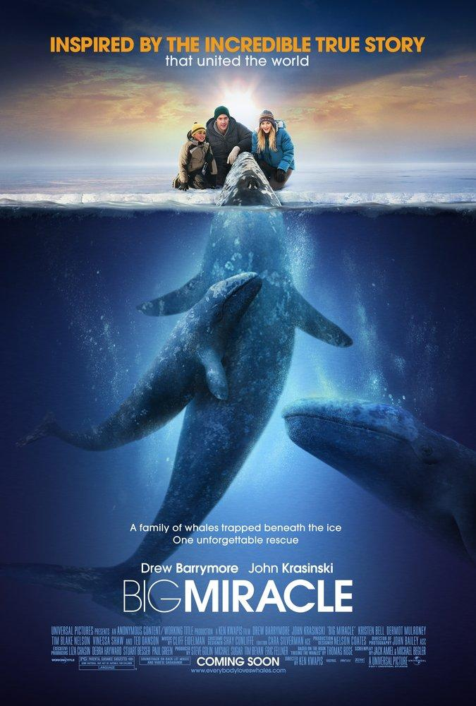Big Miracle Movie Poster, Movie Poster, Poster Satış, all posters, kanvas tablo, canvas print sales