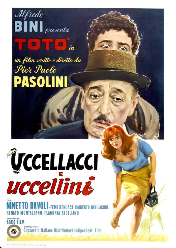 Şahinler ve Serçeler Film Posteri, Film Posteri, Poster Satış, all posters, kanvas tablo, canvas print sales