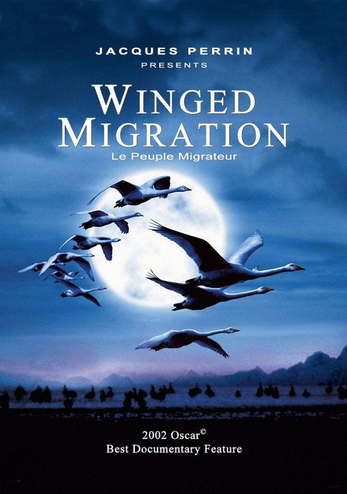 Winged Migration Movie Poster, Movie Poster, Poster Satış, all posters, kanvas tablo, canvas print sales
