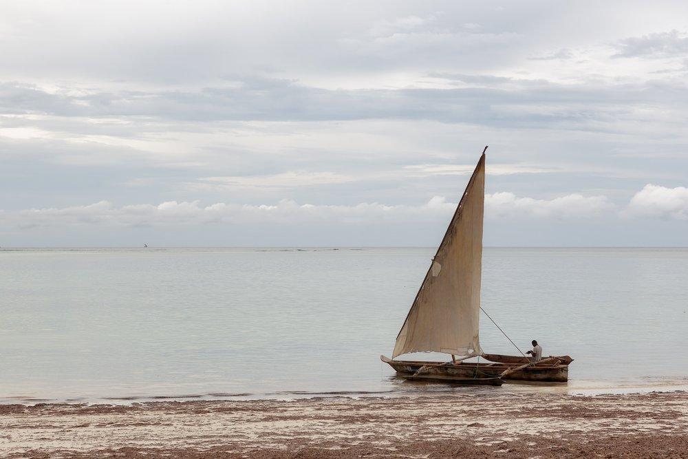 Dhow Boat - Zanzibar Poster, Ship, Poster Satış, all posters, kanvas tablo, canvas print sales