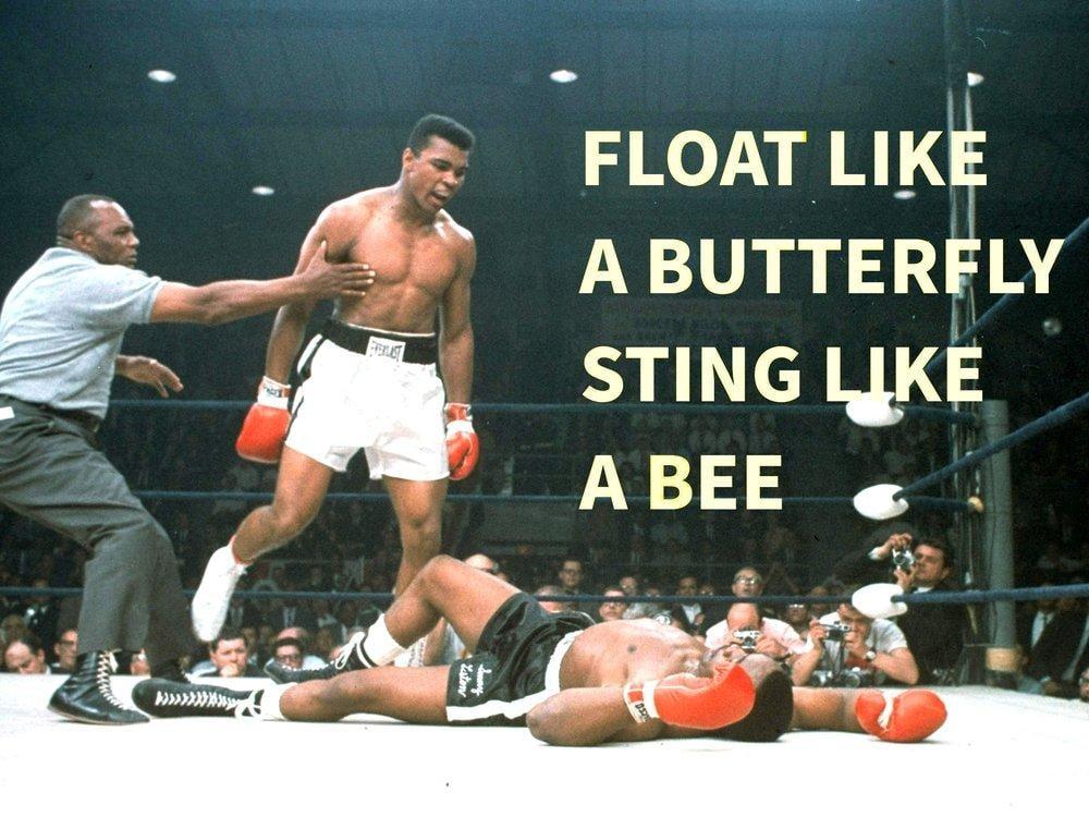 Float Like a Butterfly Sting Like a Bee Poster, Sport, Poster Satış, all posters, kanvas tablo, canvas print sales