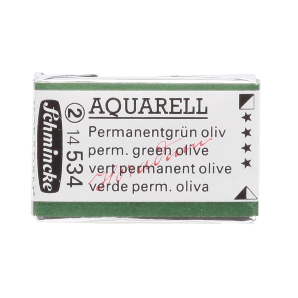 Schmincke H Aquarell 1/1 tab Permanent Green Olive 534  Suluboya, Suluboya, Schmincke, kanvas tablo, canvas print sales