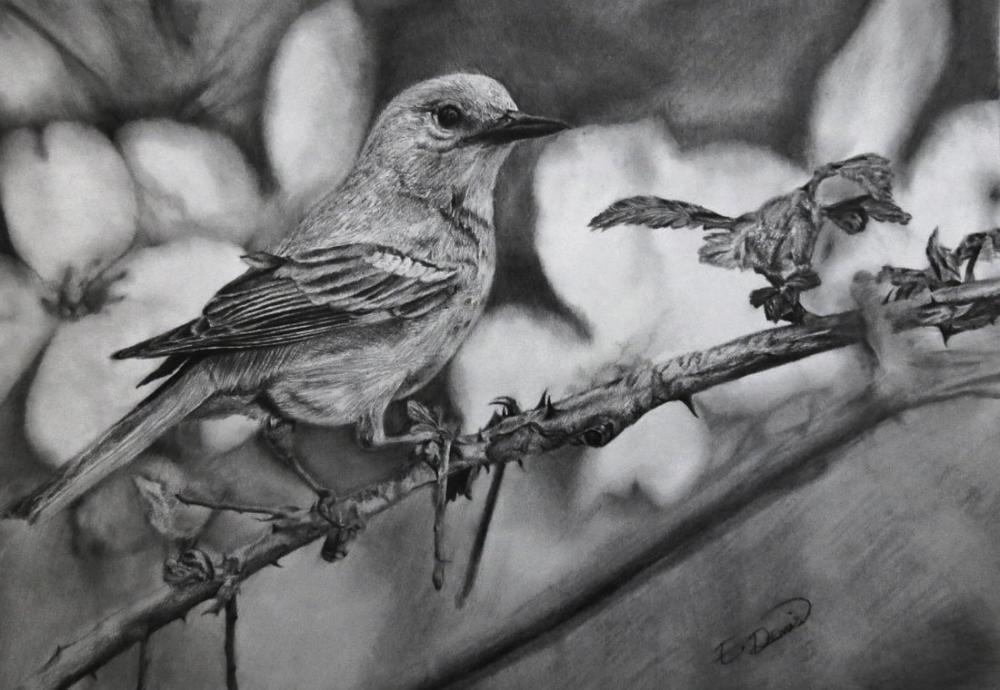 Ormandaki kuş, Orijinal Tablolar, , kanvas tablo, canvas print sales