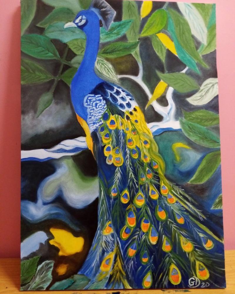 Tavus kuşu, Orijinal Tablolar, , kanvas tablo, canvas print sales