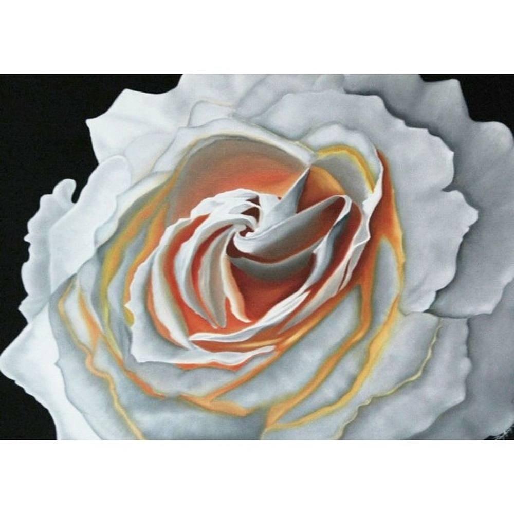 White Rose, Original Paintings,