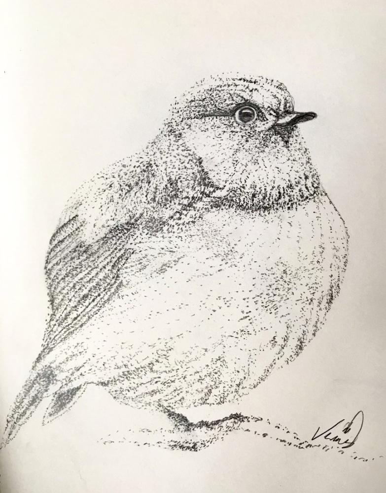Bird-3, Original Paintings, , kanvas tablo, canvas print sales